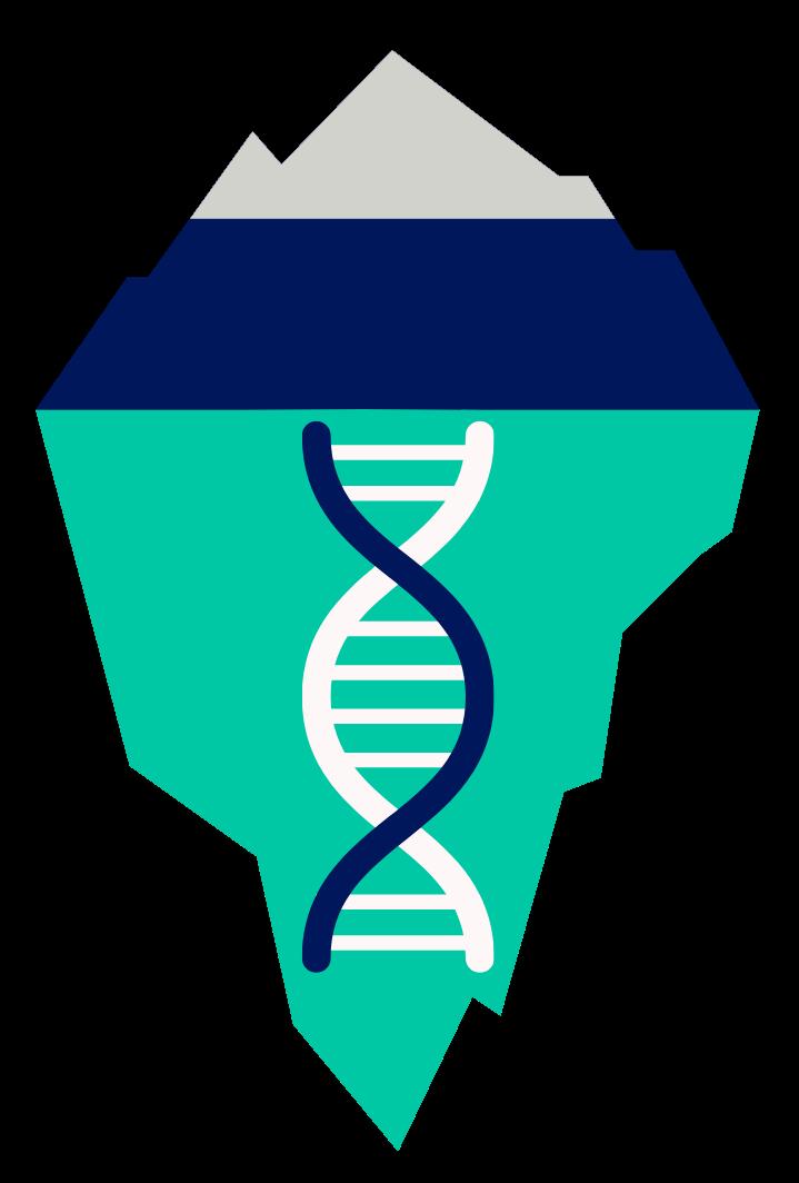 Sito DNA BRAND plus